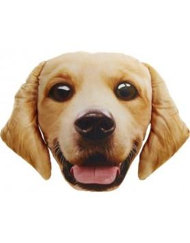 Pet Face - Golden Retriever