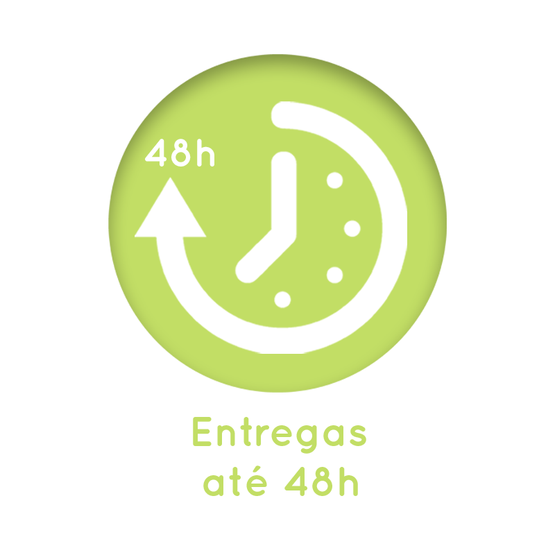 Icon Entregas em 48h.png